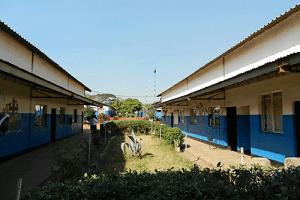 Maler Matthe Berlin fördert das AIDS-Waisen und Schulprojekt BOCCS in Kabwes - Sambia